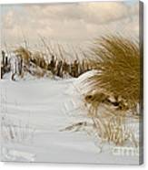 Winter At The Beach 3 Canvas Print