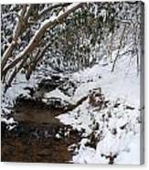 Winter At The Creek Canvas Print