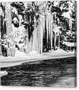 Winter At The Creek Monochrome Canvas Print