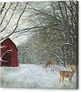 Winter Barn Canvas Print