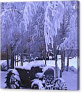 Frozen Beauty Canvas Print