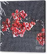 Winter Berries II Canvas Print