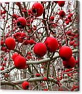 Winter Berryscape Canvas Print