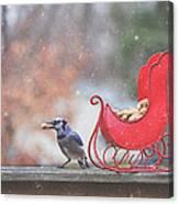 Winter Blue Jay #2 Canvas Print