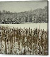 Winter By The Pond Canvas Print