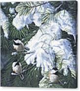 Winter Chickadees Canvas Print