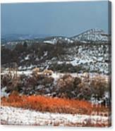 Winter Colors 3 Canvas Print