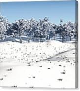Winter Coppice Canvas Print