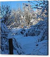 Winter Day II Canvas Print