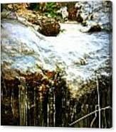 Winter Dells Canvas Print