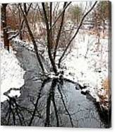 Winter Ditch Canvas Print