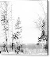 Winter Drawing Canvas Print