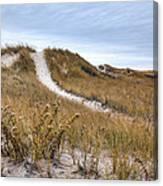 Winter Dune Canvas Print