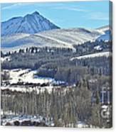 Winter Evening Aspen Canvas Print