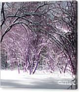 Winter Faeries Canvas Print