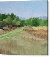 Winter Field N0. 2 Canvas Print