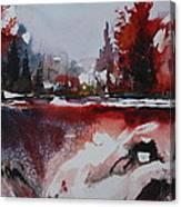 Winter Firerworks Canvas Print