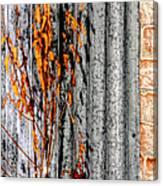 Winter Foliage Tin 13134 Canvas Print