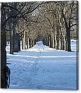 Winter Foot Prints Canvas Print