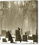 Winter Graveyard Crows Canvas Print