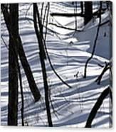 Winter Hillside Canvas Print