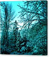 Winter In Denmark Canvas Print