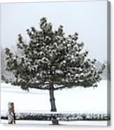 Winter In The Heartland 11 Canvas Print