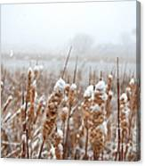 Winter In The Heartland 6 Canvas Print