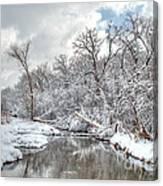 Winter In The Heartland 9 Canvas Print