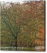 Winter Lake Canvas Print