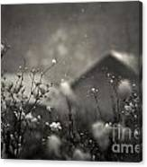Winter Landscape With Snow Falling And Plants Canvas Print