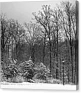 Winter Light Post Canvas Print