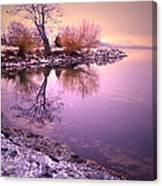 Winter Light Reflected Canvas Print