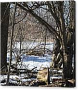 Winter Log Canvas Print