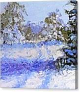 Winter Morn Canvas Print