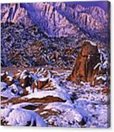 Winter Morning Alabama Hills And Eastern Sierras Canvas Print