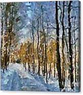 Winter Morning In The Forest Canvas Print