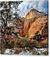 Winter Morning In Zion Canvas Print