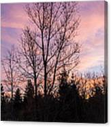 Winter Morning Sky Canvas Print