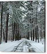 Winter On Mohegan Park Road Canvas Print