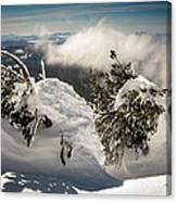 Winter On Mt. Bachelor Canvas Print
