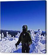 Winter On Mt Jackson Canvas Print