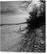 Winter On The Beach  Canvas Print