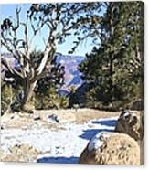 Winter On The South Rim Canvas Print