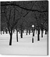 Winter Park Canvas Print