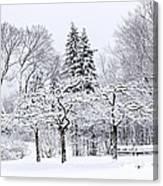 Winter Park Landscape Canvas Print