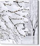 Winter Park Under Heavy Snow Canvas Print