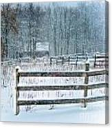 Winter Pasture Canvas Print