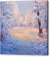 Winter Path. Canvas Print