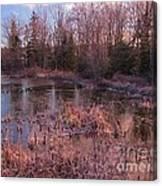 Winter Pond Landscape Canvas Print
